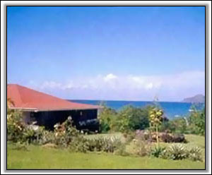 Carambola Sits 200 Yards From Oualie Beach - Villas In Nevis