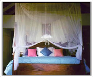 The Bedroom In Caribbean Colors - Vacation Property
