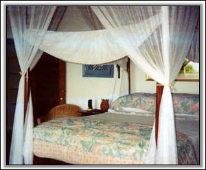 West Indian Style Bedroom - Vacation Houses