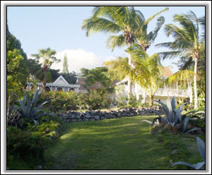 Figtree House - A Secluded Nevis Property - Vacation Rentals
