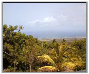 Views Of The Caribbean Neighboring Islands - Nevis Luxury Houses