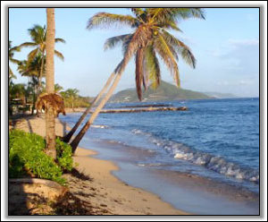 The Secluded Beach At Lazy Turtle Villa - Nevis Island Rental Homes