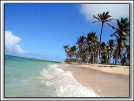 Newcastle Beach Nevis, West Indies -  Villa Rentals Of Nevis
