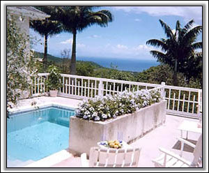 Rowan House Surrounded By Nevis Palms - Property Rental