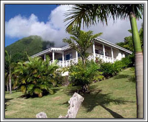 Sugar Hill Villa Amongst The Nevis Palms - Vacation Homes