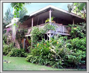 Treetops Villa High Up Nevis Peak - Rental Property