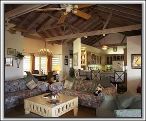 The Designer Furnished Lounge - Nevis Villas