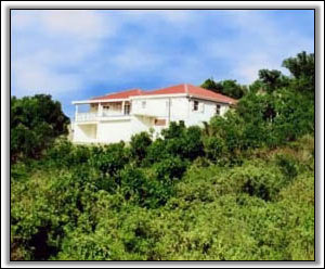 Vista Del Mar Has Great Views Of Nevis - Villa Rentals