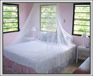 The Bedroom Looks Out On Saint Kitts - Nevis Property